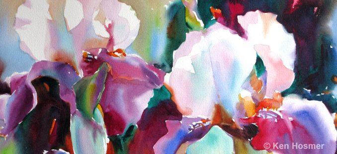 'Iris' watercolor painting by Ken Hosmer